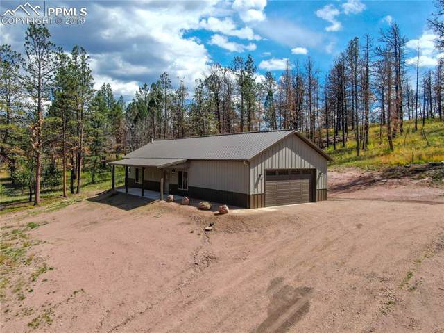 28 Spring Valley Drive, Florissant, CO 80816 (#3428350) :: Fisk Team, RE/MAX Properties, Inc.