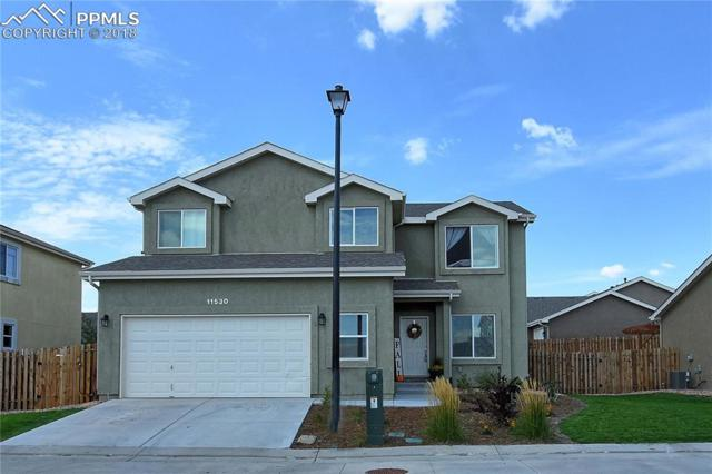 11530 Farnese Heights, Peyton, CO 80831 (#3428741) :: Action Team Realty