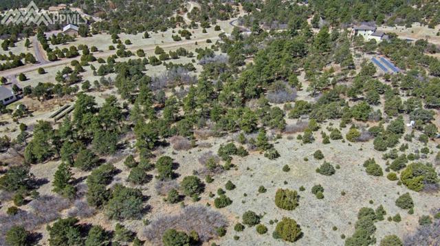 15905 Cala Rojo Drive, Colorado Springs, CO 80926 (#3429996) :: 8z Real Estate