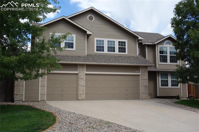 1820 Warm Tree Drive, Colorado Springs, CO 80919 (#3430015) :: 8z Real Estate