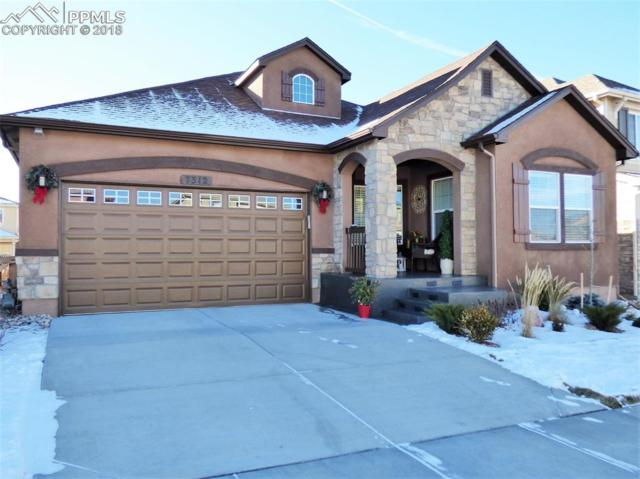 7312 Jagged Rock Circle, Colorado Springs, CO 80927 (#3433848) :: Venterra Real Estate LLC