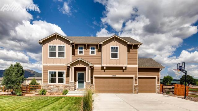 17672 Water Flume Way, Monument, CO 80132 (#3436421) :: Jason Daniels & Associates at RE/MAX Millennium