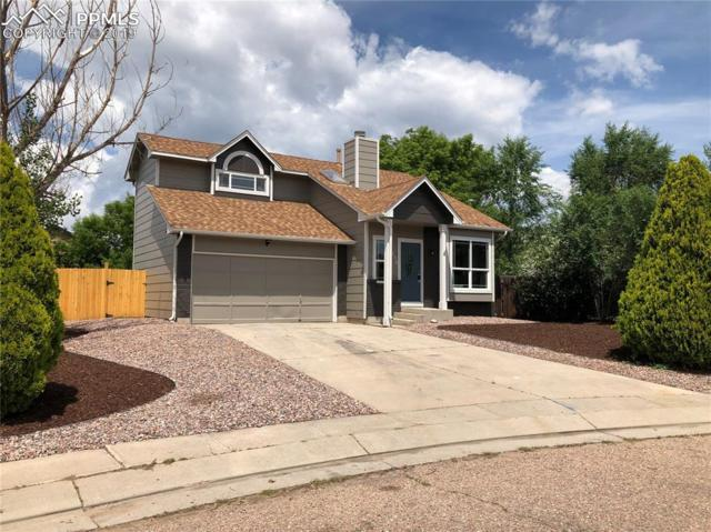 330 Oneil Court, Colorado Springs, CO 80911 (#3439387) :: Action Team Realty