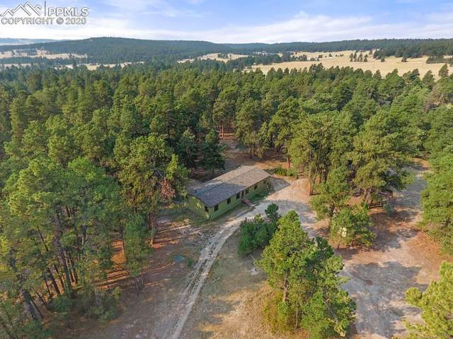 18823 Smokey Pine Road, Peyton, CO 80831 (#3442665) :: The Treasure Davis Team