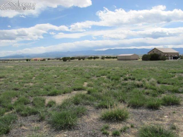 78 Tumbleweed Trail, Penrose, CO 81240 (#3443257) :: Colorado Home Finder Realty