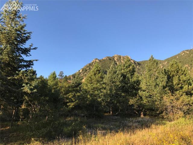 390 Irvington Court, Colorado Springs, CO 80906 (#3446889) :: Action Team Realty