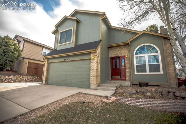 2830 Harrisburg Way, Colorado Springs, CO 80922 (#3446960) :: Perfect Properties powered by HomeTrackR