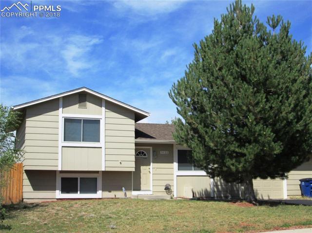 5122 Alturas Circle, Colorado Springs, CO 80911 (#3450495) :: The Kibler Group