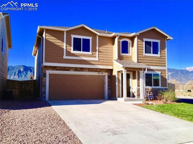2310 Spring Blossom Drive, Colorado Springs, CO 80910 (#3451234) :: Tommy Daly Home Team