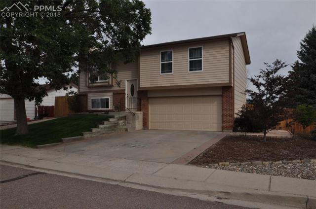 8180 Essington Drive, Colorado Springs, CO 80920 (#3452634) :: CENTURY 21 Curbow Realty