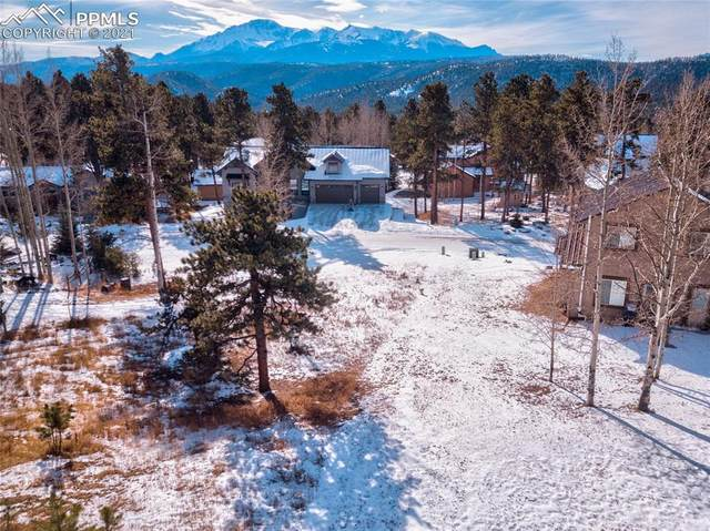 620 Skyline Drive, Woodland Park, CO 80863 (#3453985) :: Finch & Gable Real Estate Co.