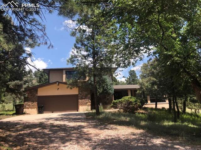 6925 Winter Hawk Circle, Colorado Springs, CO 80919 (#3456171) :: Venterra Real Estate LLC