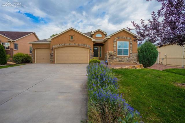 3775 Allgood Drive, Colorado Springs, CO 80911 (#3456223) :: 8z Real Estate