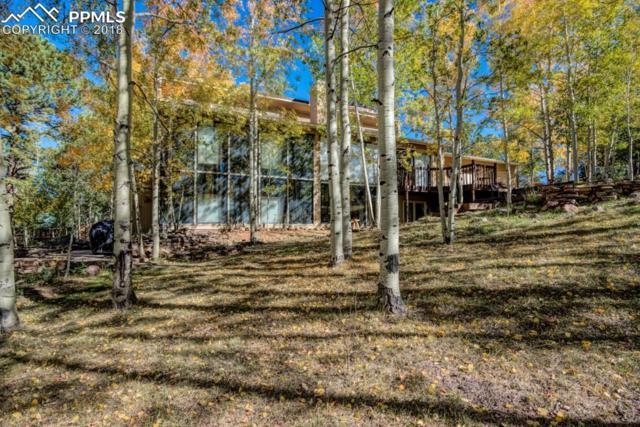 225 Pennsylvania Avenue, Woodland Park, CO 80863 (#3458076) :: Venterra Real Estate LLC