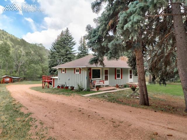 8146 Chipita Park Road, Cascade, CO 80809 (#3458574) :: The Treasure Davis Team