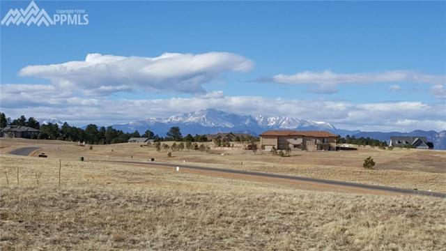4539 Settlers Ranch Road, Colorado Springs, CO 80908 (#3465136) :: Jason Daniels & Associates at RE/MAX Millennium