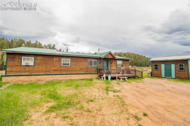 417 Shadow Lake Drive, Divide, CO 80814 (#3469211) :: Fisk Team, RE/MAX Properties, Inc.