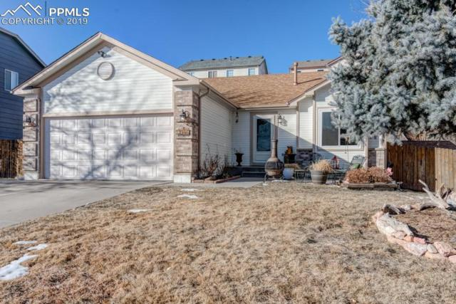 2946 Walton Creek Drive, Colorado Springs, CO 80922 (#3478410) :: The Peak Properties Group