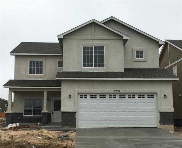 7871 Dry Willow Way, Colorado Springs, CO 80908 (#3482544) :: 8z Real Estate