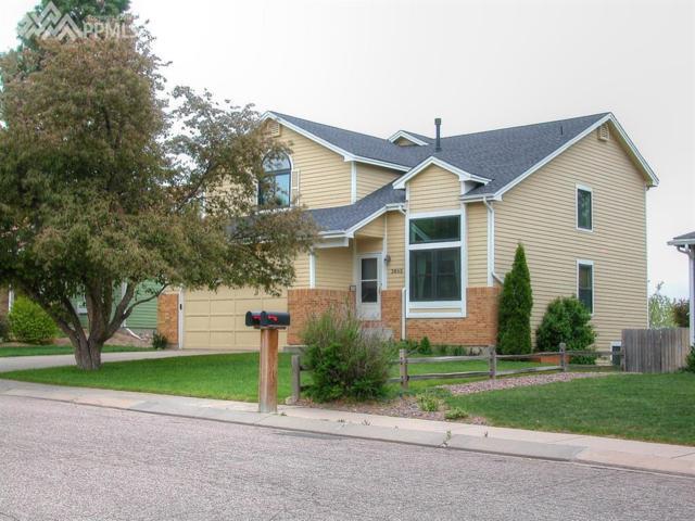 3685 Hickory Hill Drive, Colorado Springs, CO 80906 (#3483049) :: The Treasure Davis Team