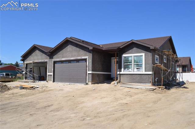 379 Buttonwood Place, Monument, CO 80132 (#3483829) :: The Kibler Group