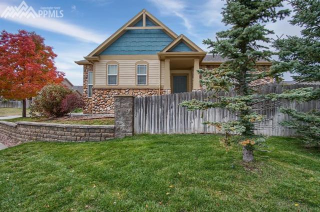 11962 Rodez Grove, Peyton, CO 80831 (#3484610) :: 8z Real Estate