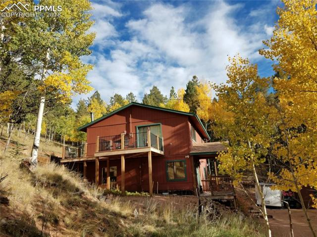 1184 Bennett Drive, Cripple Creek, CO 80813 (#3488392) :: Colorado Home Finder Realty