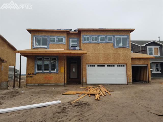 6550 Stonefly Drive, Colorado Springs, CO 80924 (#3488880) :: 8z Real Estate