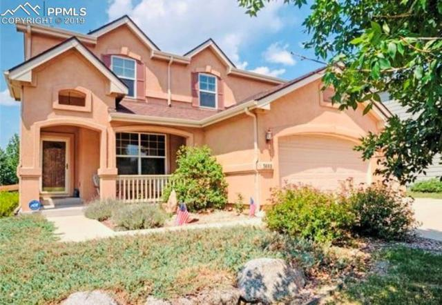 3668 Tail Wind Drive, Colorado Springs, CO 80911 (#3492104) :: Venterra Real Estate LLC