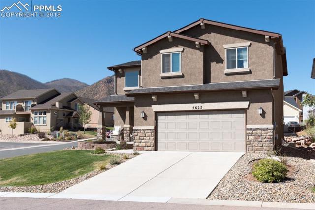 5625 Majestic Drive, Colorado Springs, CO 80919 (#3494284) :: 8z Real Estate