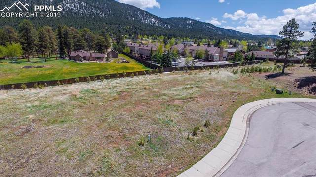 1215 Cottontail Trail, Woodland Park, CO 80863 (#3495290) :: Fisk Team, RE/MAX Properties, Inc.