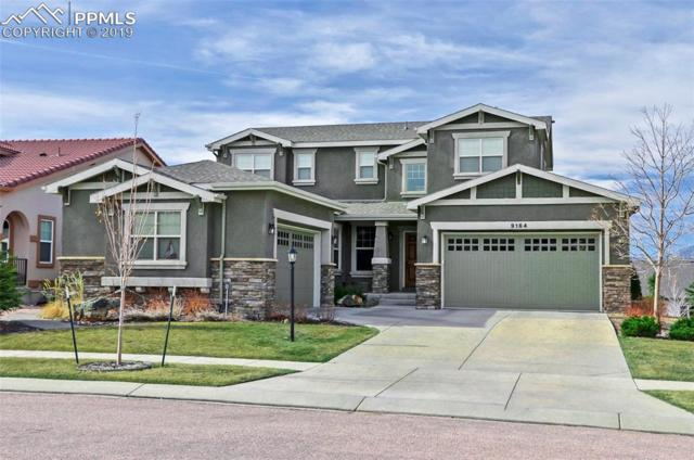 9164 Dome Rock Place, Colorado Springs, CO 80924 (#3495818) :: Tommy Daly Home Team