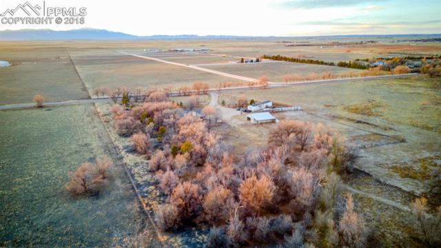 1425 S Ellicott Highway, Calhan, CO 80808 (#3496482) :: The Kibler Group