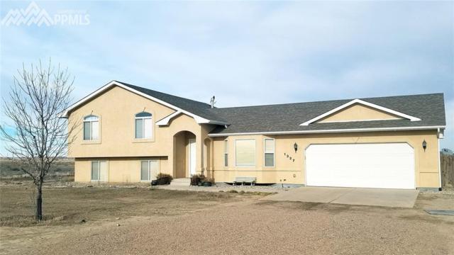 1337 Kiva Drive, Pueblo West, CO 81007 (#3497811) :: 8z Real Estate