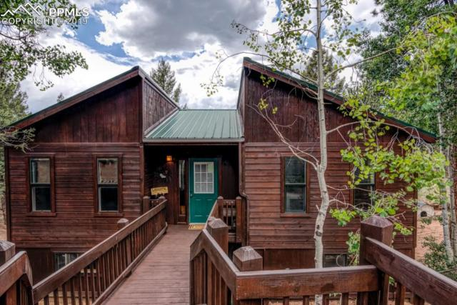 221 Tidi Road, Florissant, CO 80816 (#3500214) :: HomePopper