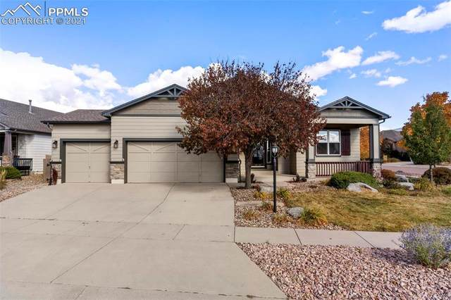 9503 Newport Plum Court, Colorado Springs, CO 80920 (#3508084) :: Relevate | Denver