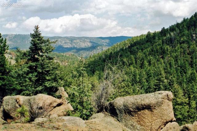 430 Tillicum Trail, Woodland Park, CO 80863 (#3509778) :: 8z Real Estate