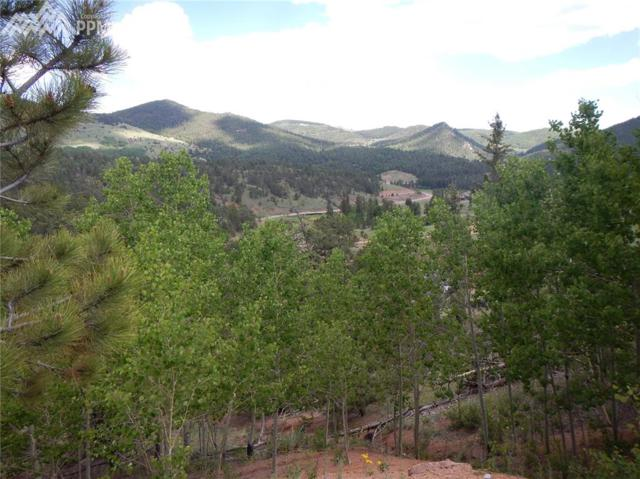 206 Molly Kathleen Drive, Cripple Creek, CO 80813 (#3510398) :: The Peak Properties Group