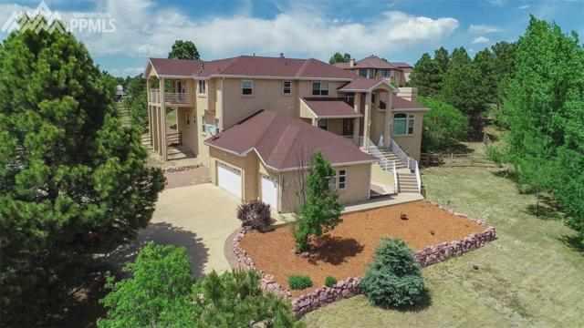 19550 Fox Trail Way, Monument, CO 80132 (#3510831) :: Fisk Team, RE/MAX Properties, Inc.