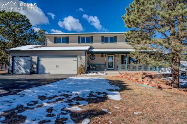18280 Stone View Road, Monument, CO 80132 (#3513620) :: Venterra Real Estate LLC