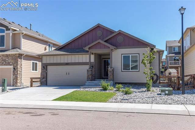 17855 Smelting Rock Drive, Monument, CO 80132 (#3514429) :: Tommy Daly Home Team