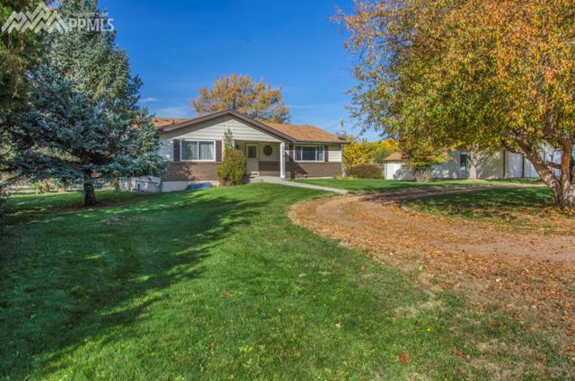 10775 Shumway Road, Fountain, CO 80817 (#3517965) :: Action Team Realty