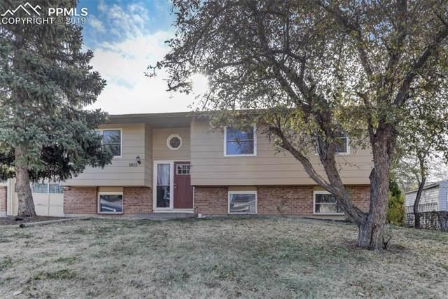 1011 De La Vista Lane, Colorado Springs, CO 80911 (#3519094) :: Tommy Daly Home Team