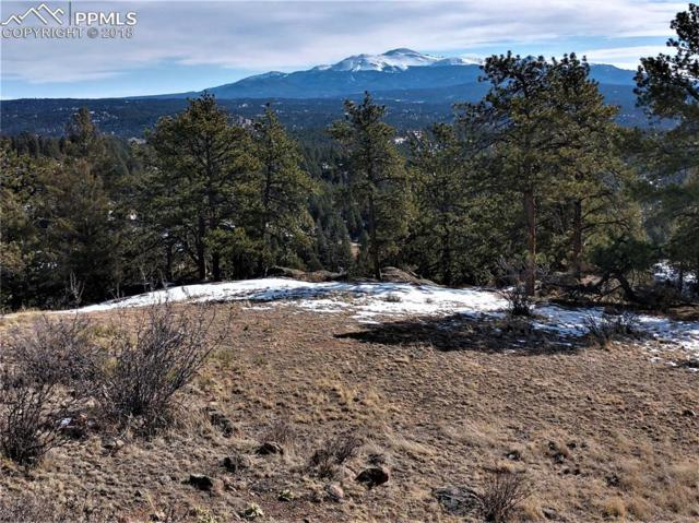 976 Commanche Trail, Florissant, CO 80816 (#3519913) :: Action Team Realty