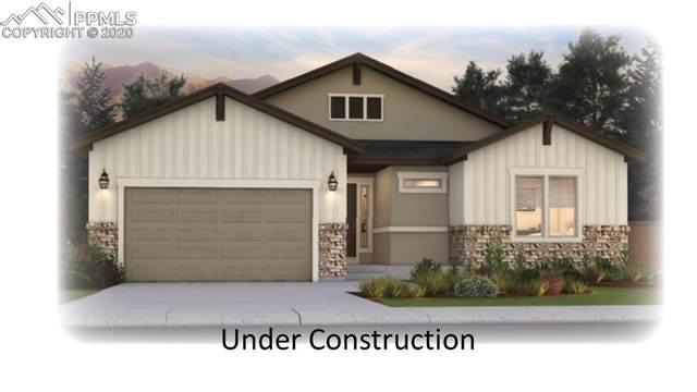 16194 Enchanted Peak Way, Monument, CO 80132 (#3521663) :: Action Team Realty