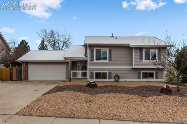 3335 Marble Terrace, Colorado Springs, CO 80906 (#3523866) :: CC Signature Group