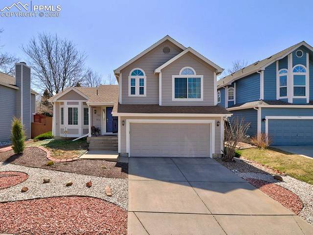 794 Homestead Drive, Highlands Ranch, CO 80126 (#3525806) :: Fisk Team, RE/MAX Properties, Inc.