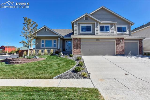 4985 Nugent Drive, Colorado Springs, CO 80922 (#3525996) :: Fisk Team, RE/MAX Properties, Inc.