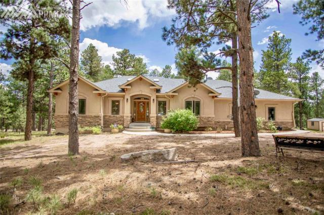 18020 Black Squirrel Road, Colorado Springs, CO 80908 (#3528073) :: The Peak Properties Group