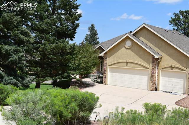 2246 Green Rush Place, Colorado Springs, CO 80919 (#3528350) :: 8z Real Estate